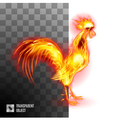 Fiery golden rooster on transparent background vector