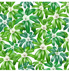 Seamless floral nature background pattern with vector