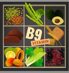 Vitamins box image vector