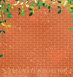 Wall leaves vector