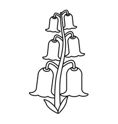 Bell flowers flora botany thin line vector