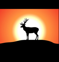 Deer with horns standing against the sunset vector