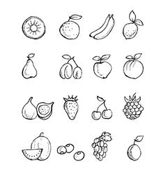 Hand- painted fruit icons vector image vector image