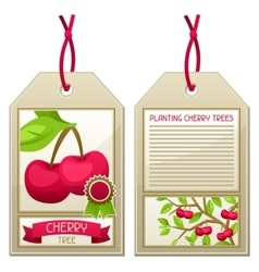 Sale tag of seedlings cherry trees instructions vector