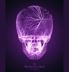 skull constructed with violet lines vector image