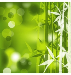 bamboo abstract vector image