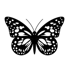 Butterfly in black and white vector