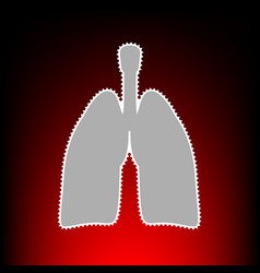 human gans lungs vector image