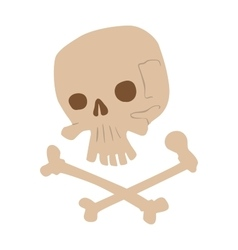 Skull bones isolated on white vector image vector image