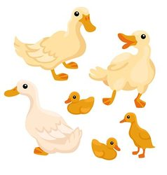 Tree white adult ducks with tree ducklings vector image vector image