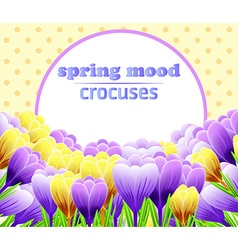 Card with crocuses spring flower perfect for vector