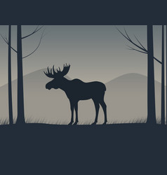 An elk silhouette standing in a forest vector