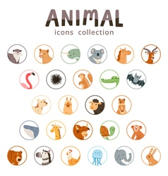Animal icons collection vector image