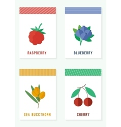 Cards with fresh berries vector image vector image