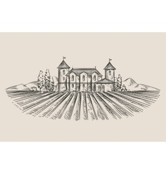 Vineyard hand-drawn sketch vector