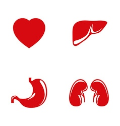 Human internal organs icons set vector