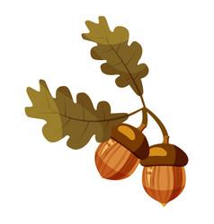 acorn icon cartoon style vector image