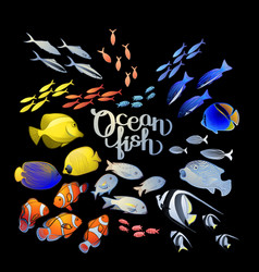 graphic ocean fish vector image