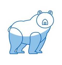 Cartoon bear character wildlife animal carnivore vector
