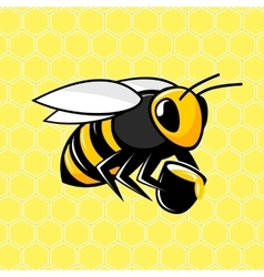 Bee on a honeycomb background vector