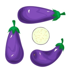 Set eggplants vector image
