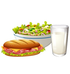 Set menu with sandwich and salad vector