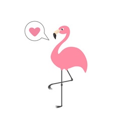 Pink flamingo on one leg talk think bubble with vector