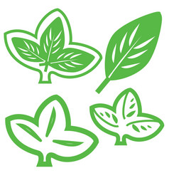 Leaf Variations vector image