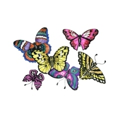 Watercolor butterflies set isolated on white vector image vector image