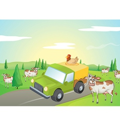 Cows and a chicken vector image