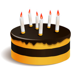 Big layered cake for celebration vector image