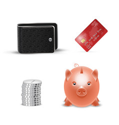 Realistic credit card wallet money vector