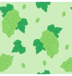 Seamless pattern with white grapes on light green vector