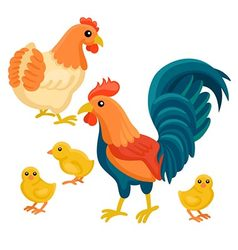 Adult hen and rooster with tree chickens vector image vector image