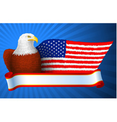 American eagle flag wing vector
