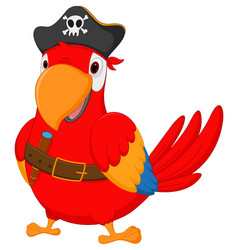 pirate parrot cartoon vector image
