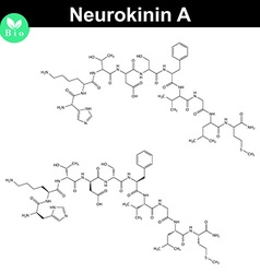 Neurokinin A chemical structure vector image