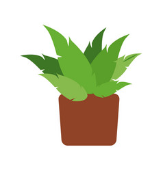 Pot plant natural decoration space vector