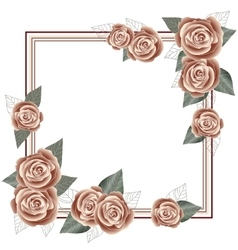 Rose frame for a postcard square form vector image vector image