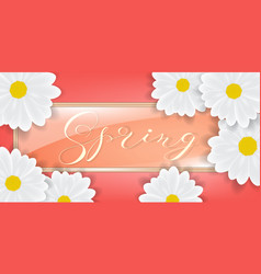 Bouquet of white daisy or gerber flowers vector