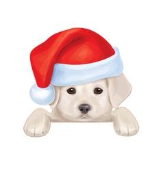 Santa puppy vector image vector image