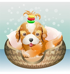 The puppy vector image