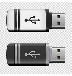 flash drive usb vector image vector image