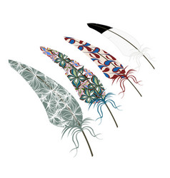 Abstract feather texture design vector