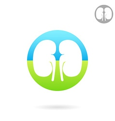 Kidney medical icon vector image vector image