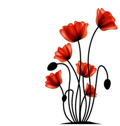 Abstract red poppy vector image