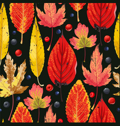 autumn pattern with leaves and berries vector image vector image