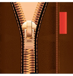 leather and zipper vector image vector image