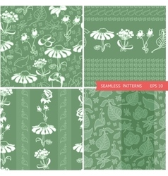 set patterns with white flowers vector image
