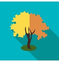 Fluffy autumn tree icon flat style vector